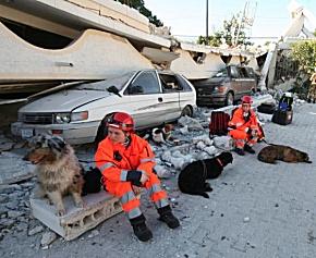 Pause für Hunde und Helfer. (Foto: @fire)