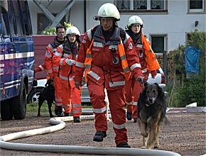 Rettungshunde in Aktion (Foto: DRK Säckingen)