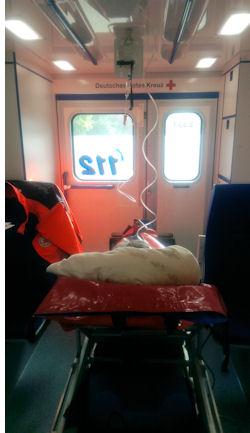 Das erste Ausbildungsjahr besteht darin, dass wir als Drittmann auf den Rettungswagen mitfahren.