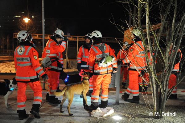 Rettungshunde im Einsatz. Symbolfoto: Markus Brändli