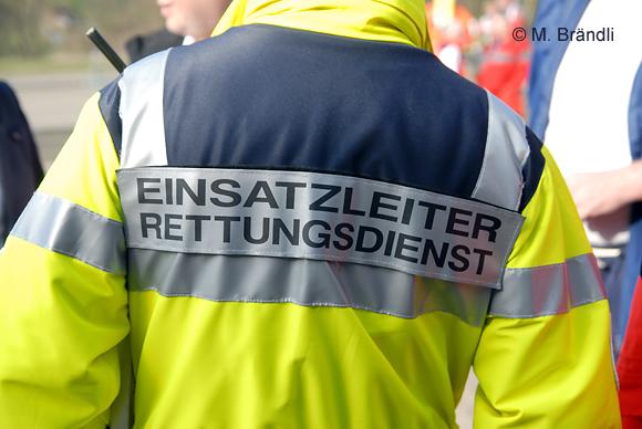 In Geisenheim fuhr der Rettungsdienst mit einem Großaufgebot zu einem ungewöhnlichen Verkehrsunfall. Symbolfoto: Markus Brändli